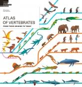 Atlas of Vertebrates